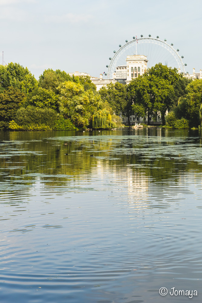 Saint James Park - Londres