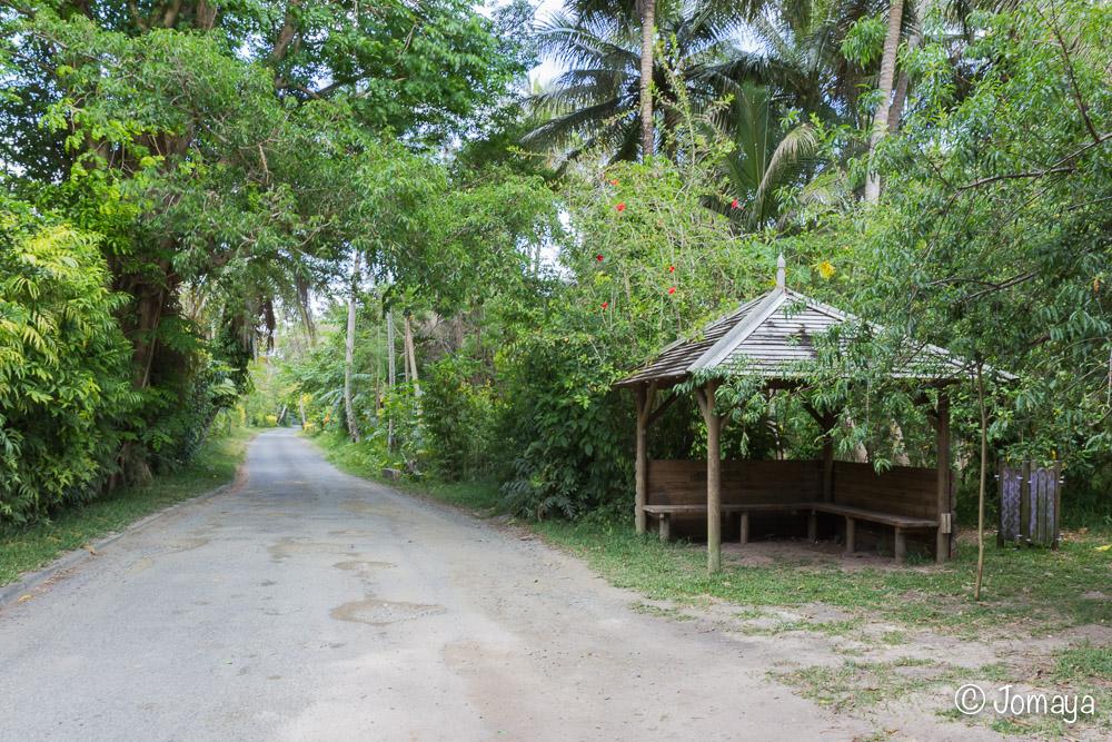 Promenade sur la plage du Billet de 500 - Falaises de Lindéralique - Hienghène - Nouvelle Calédonie
